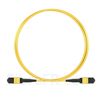 Image de 2m Senko MPO Femelle 12 Fibres OS2 9/125 Câble Trunk Monomode, Type B, Élite, LSZH, Jaune