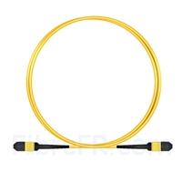 Image de 1m MPO Femelle 12 Fibres OS2 9/125 Câble Trunk Monomode, Type B, Élite, LSZH, Jaune