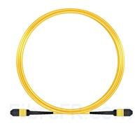 Image de 10m MPO Femelle 12 Fibres OS2 9/125 Câble Trunk Monomode, Type A, Élite, LSZH, Jaune