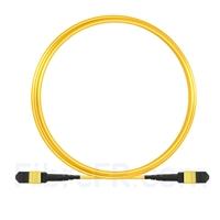 Image de 7m MTP Câble Trunk Mâle 12 Fibres OS2 9/125 Monomode, Type A, Élite, LSZH, Jaune
