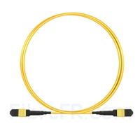 Image de 2m MTP Câble Trunk Femelle 12 Fibres OS2 9/125 Monomode, Type B, Élite, LSZH, Jaune