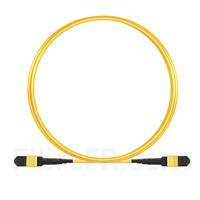 Image de 3m MTP Câble Trunk Femelle 24 Fibres OS2 9/125 Monomode, CPAK-10x 10G-LR, Type A (TIA-568), Élite, Plénum (LSZH), Jaune