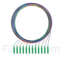 Image de 2m Pigtail à Fibre Optique à Code Couleur LC APC 12 Fibres OS2 Monomode, Sans Gaine