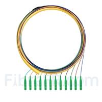 Image de 1,5m Pigtail à Fibre Optique LC APC 12 Fibres OS2 Monomode Faisceau PVC (OFNR) 0,9mm